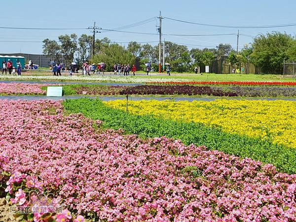 農業博覽會15-奇幻烏托邦展區-「植物地景」.jpg