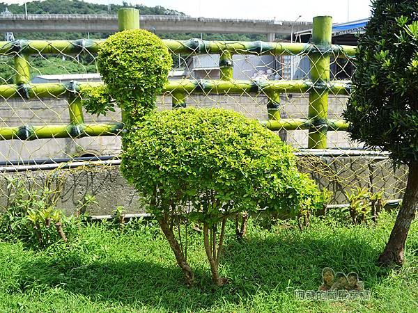 泰山繡球花步道11-小鳥外型樹叢