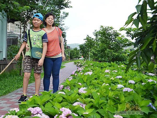 泰山繡球花步道26-漫步其中的母子