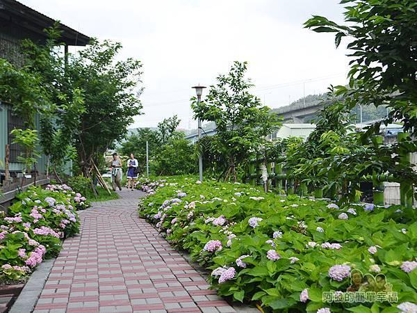 泰山繡球花步道27-三三兩兩愜意的遊客