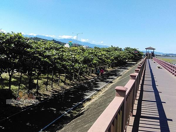 新竹市香山-風情海岸09-坡堤下為新竹17公里海岸線自行車道