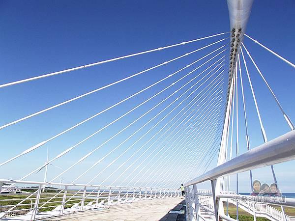 新竹市香山-豎琴橋12-橋上放射狀的白鋼纜十分和背景輝映