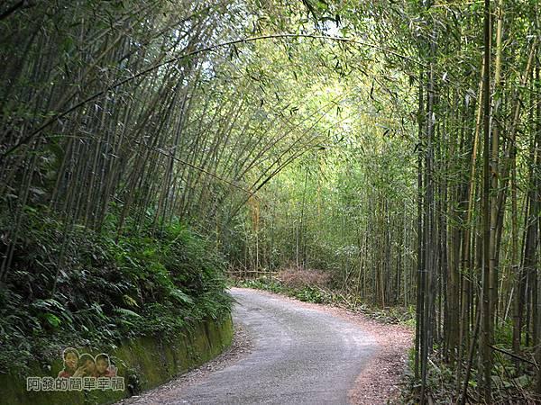 烏嘎彥竹林07-沿路的風景