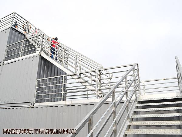 稻田彩繪05-稻田彩繪觀景台階梯.JPG