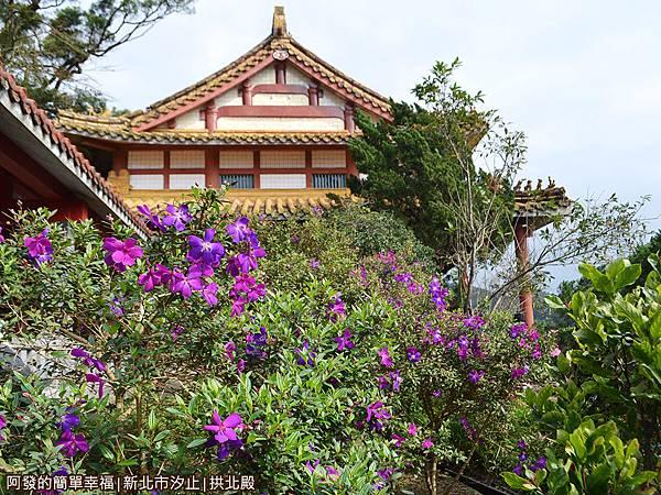汐止拱北殿11-花叢景簇