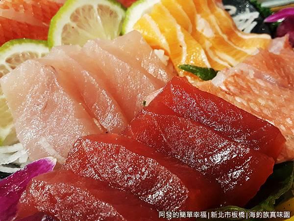 海釣族真味園13-綜合海釣魚特寫