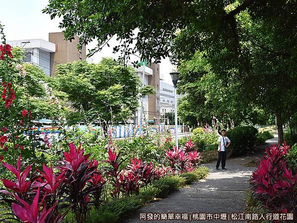 松江南路小花園08-清幽林蔭小徑.JPG