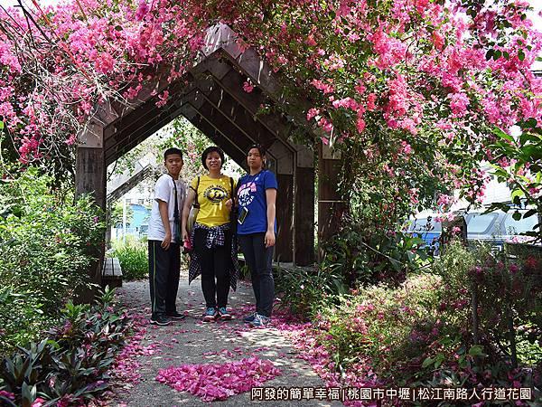 松江南路小花園11-九重葛花亭下留影.JPG