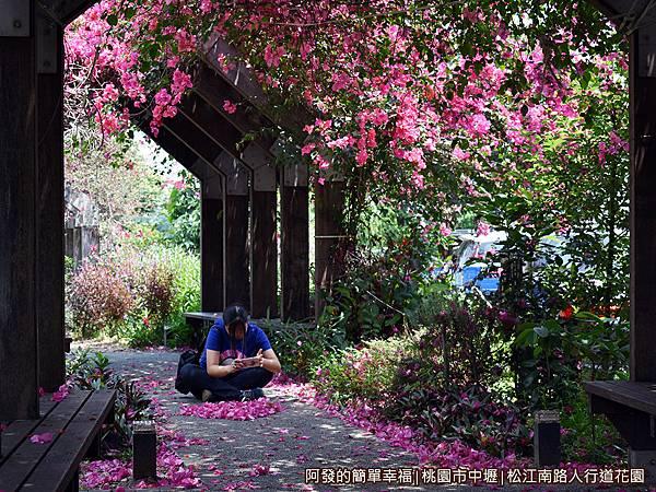松江南路小花園24-拍得很起勁的女兒.JPG