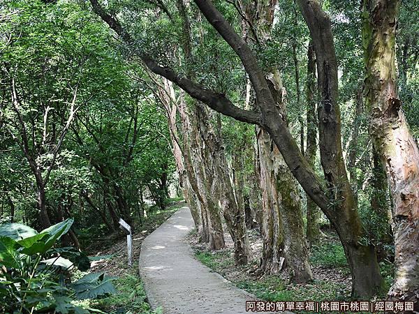 經國梅園21-生態解說步道.JPG