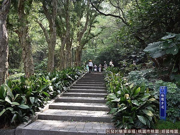 經國梅園03-梅園步道.JPG