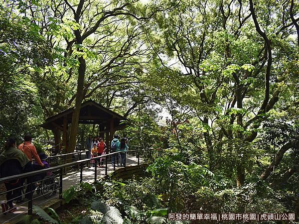 虎頭山公園周邊景點美食02-綠意盎然的環山步道.JPG
