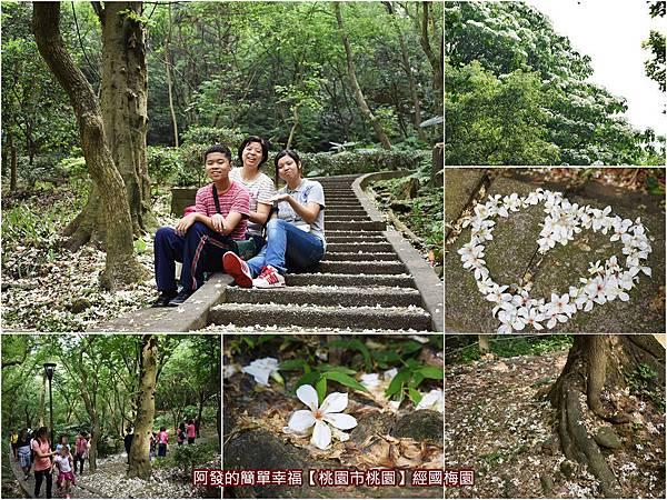 虎頭山公園周邊景點美食03-經國梅園all.jpg