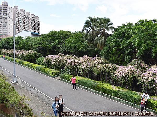 楓樹河濱公園08-堤防上視野.JPG