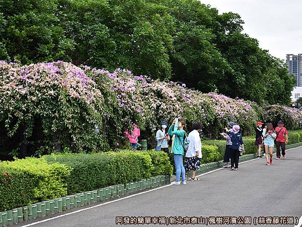 楓樹河濱公園12-遊客.JPG