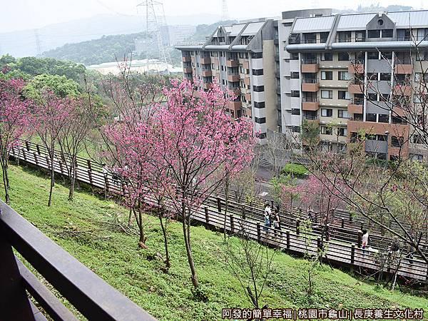 長庚養生文化村14-木棧道區就在眼前.JPG