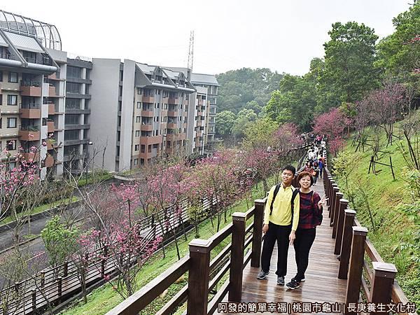 長庚養生文化村18-木棧道上留影.JPG