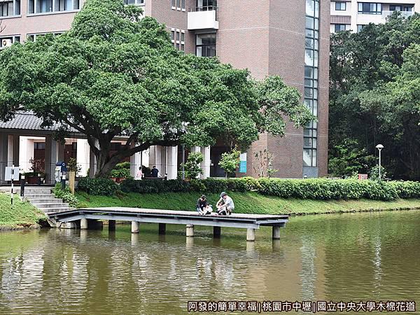 中央大學木棉花道22-湖畔一景.JPG