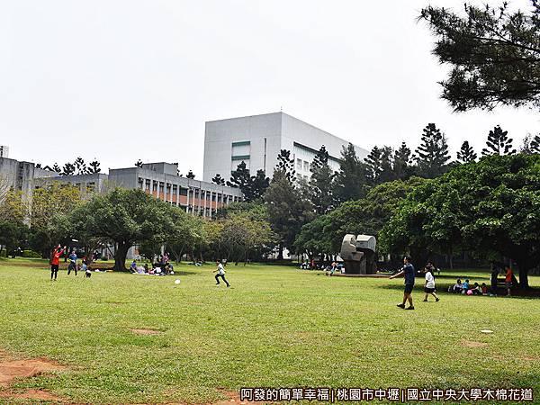 中央大學木棉花道25-大草皮上嬉戲的親子們.JPG