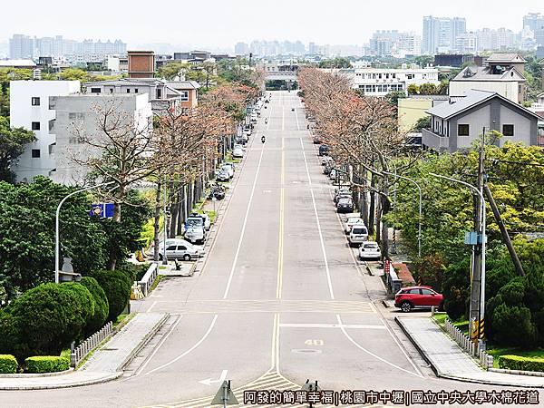 中央大學木棉花道12-中央大學門前的視角.JPG