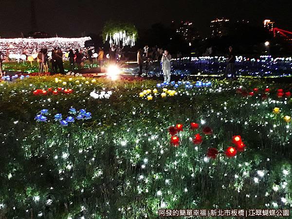 江翠蝴蝶公園09-整點忽明忽暗的光影秀.jpg