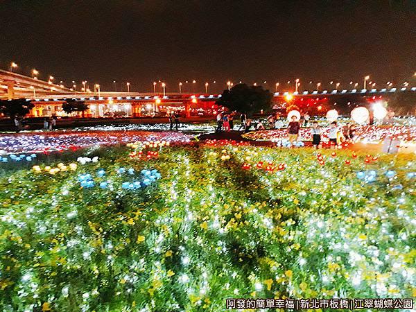 江翠蝴蝶公園10-萬株花卉光雕點綴.jpg