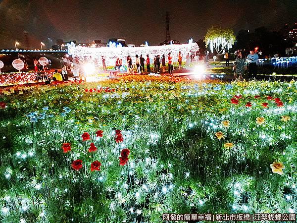 江翠蝴蝶公園13-公園中央有處光雕隧道.jpg