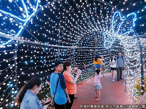 江翠蝴蝶公園19-有點像穿越時光隧道.jpg