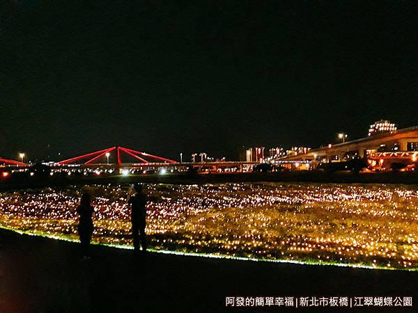 江翠蝴蝶公園22-浪漫與夢幻.jpg