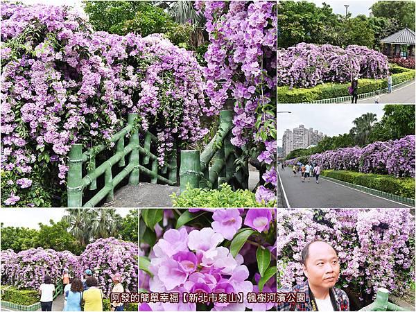 楓樹河濱公園-all.jpg