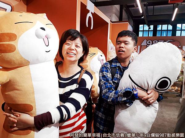 987動感樂園12-白爛貓與那條魚長型抱枕.jpg