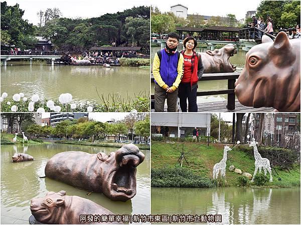 新竹市立動物園09-公園湖畔區組圖.jpg