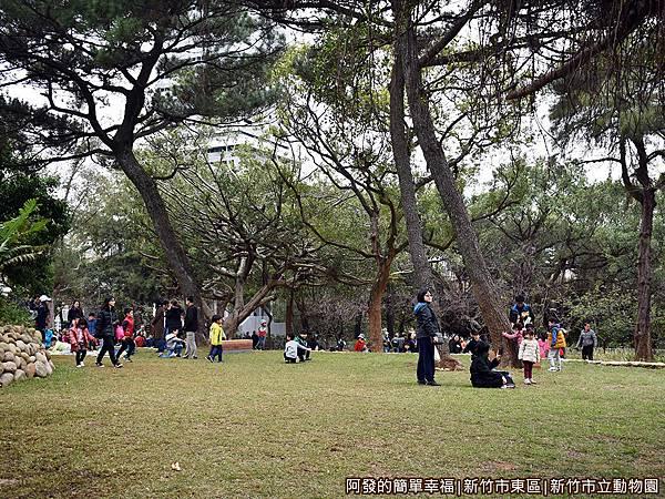 新竹市立動物園21-大草皮.JPG