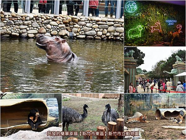 新竹市立動物園-all.jpg
