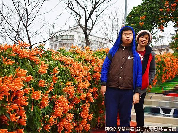 永吉公園14-兩側花牆已盛開.JPG