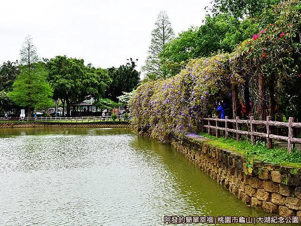 大湖紀念公園04-湖畔旁的紫藤花棚廊道.JPG