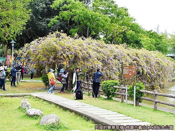 大湖紀念公園12-紫藤花棚廊道外觀.JPG