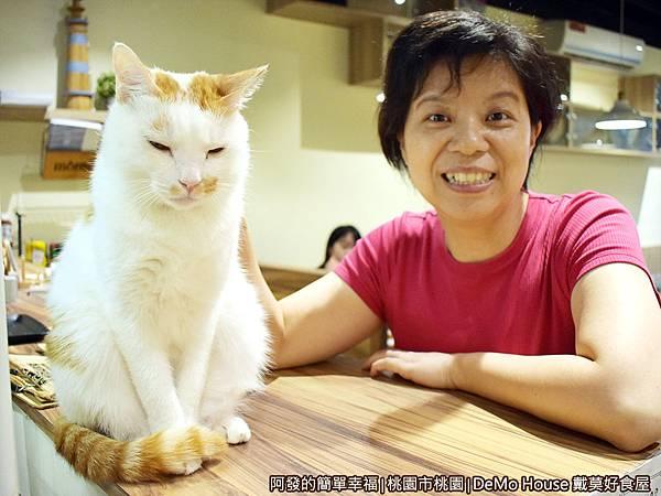 戴莫好食17-櫃台上的白貓MoMo.JPG