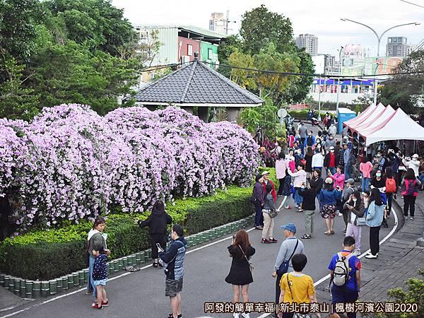 2020楓樹河濱公園04-入口處涼亭與花況.JPG