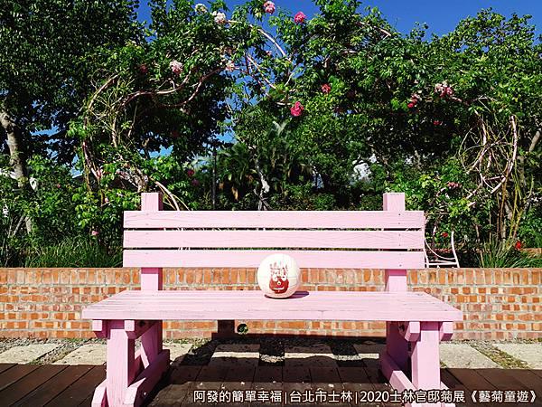 士林官邸菊展藝菊童遊20-玫瑰園-休憩中的wilson.jpg