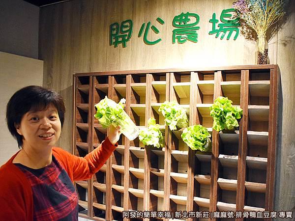 麻麻號10-青菜自挑.JPG