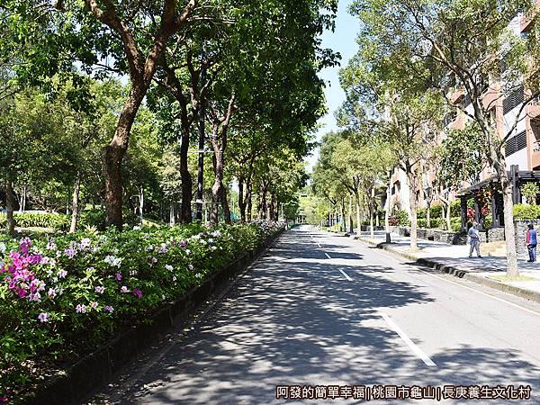 長庚養生文化村01-園區內車道有鳥語花香的Fu.JPG