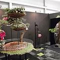 競區-爭豔館A區-14-2011洲際盃花藝競賽.jpg