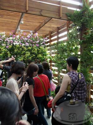 寰宇庭園區-泰國-泰國綺麗庭園中的祥和14.jpg