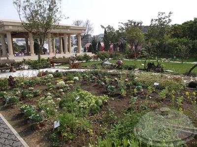 寰宇庭園區-希臘-希臘庭園:一條綻放到新視界的河流02.jpg