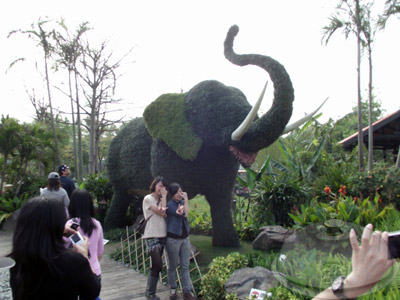 寰宇庭園區-泰國-泰國綺麗庭園中的祥和06.jpg
