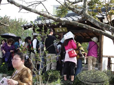 寰宇庭園區-日本-四季園藝福祉華園08.jpg