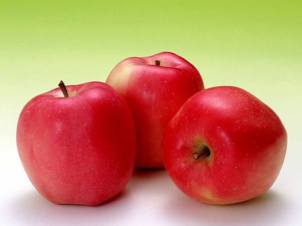 fruit_apple_apple-tree_wallpaper_Vol_014_SN003