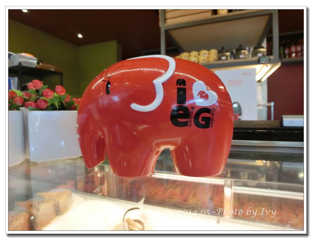 CIMG0981.JPG