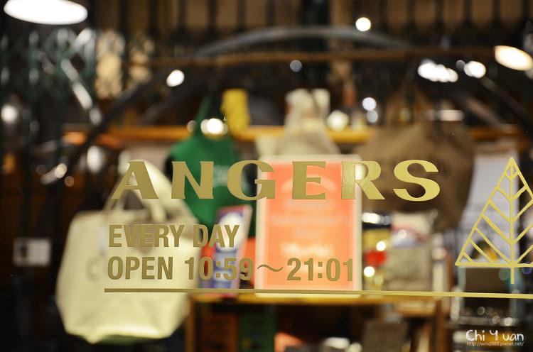Angers12.jpg